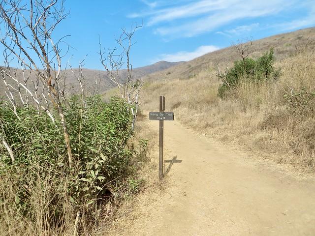 solstice canyon trails diverge