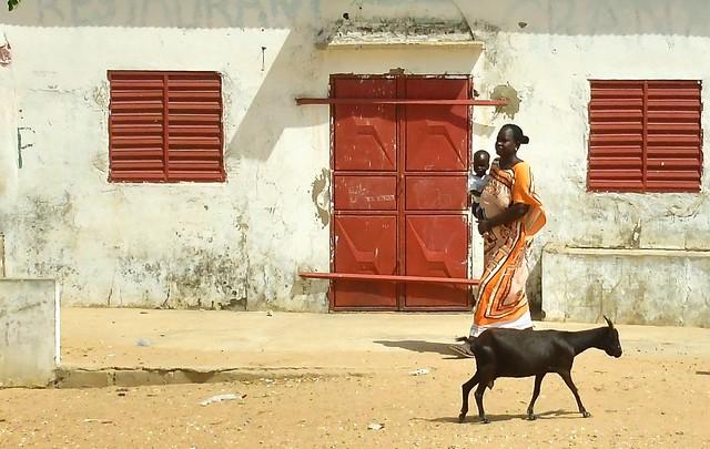 Senegal- near Warang