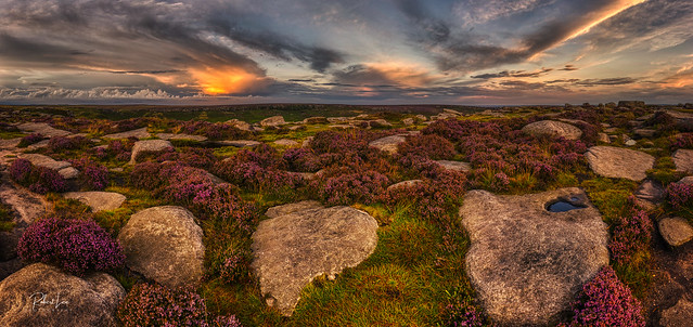Heather and Puddle, Higger Tor