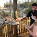 Bread & Table 2020, One Wild Night, Jody's giraffe experience