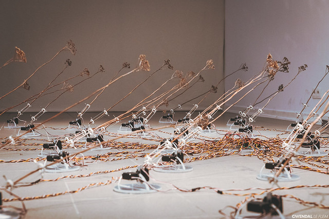 Expositions au Pont des Arts - Turquoise & tele-present wind