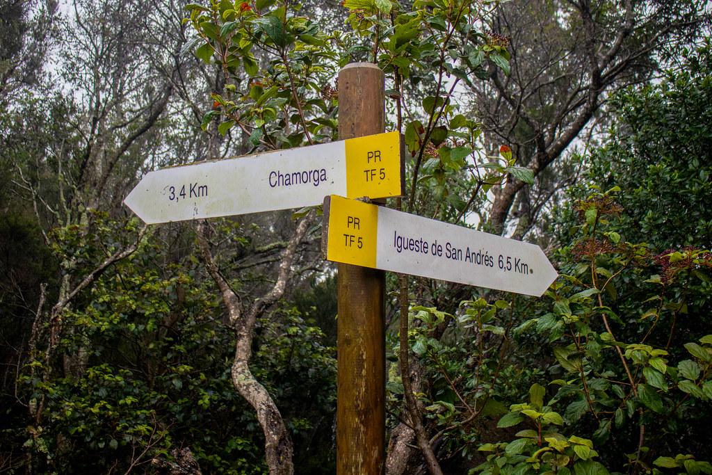 Señalización del sendero rumbo a Antequera desde Chamorga