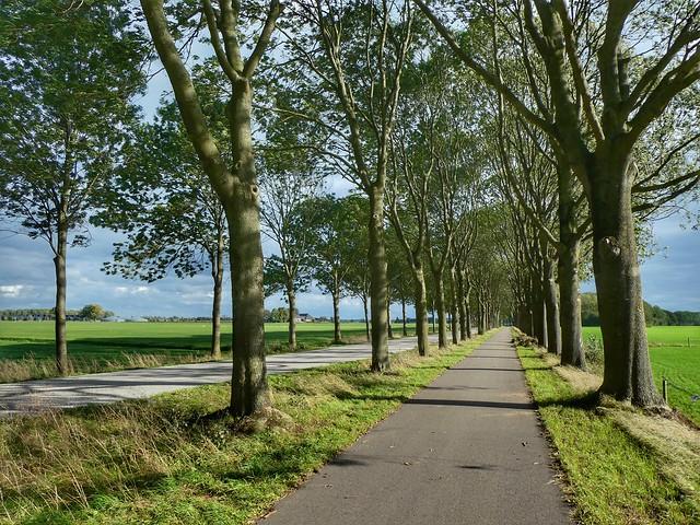 Doesburgseweg