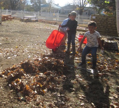 dumping the collected leaves