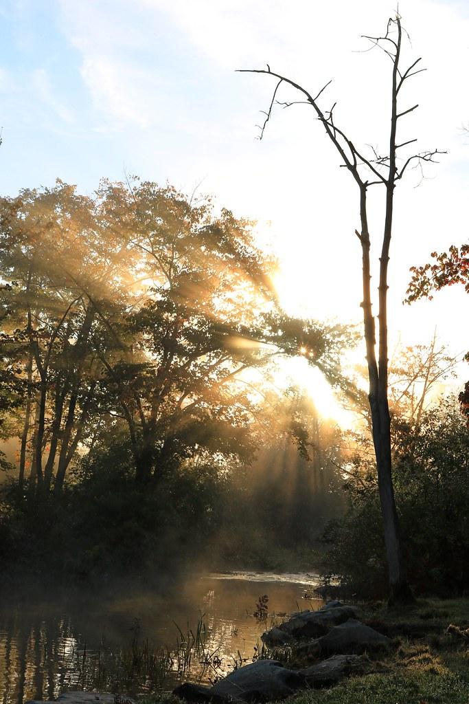 Morning fog at Morris Lake