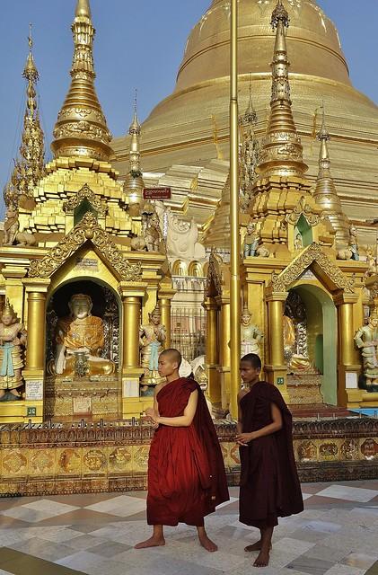 Myanmar,  Burma, die prächtigste Pagode - der Shwedagon, religiöses Zentrum des Landes , Novizen,  78042/13047