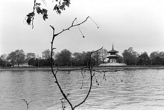 Pagoda, Battersea Park, River Thames, Chelsea Embankment, Kensington & Chelsea, 1988 88-5f-34-positive_2400