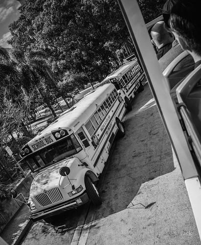 Miami mood - school bus