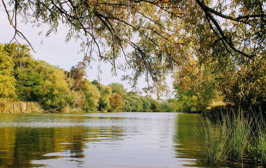 By Danube river / A Dunánál
