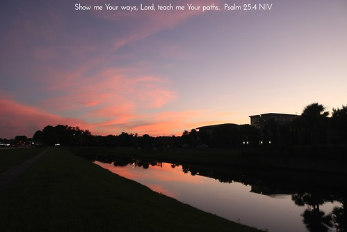jacksonville jax duval duvalcounty firstcoast florida fl fla northflorida northeastflorida horizon landscape sky water sunset sundown nature dusk evening twilight sunshinestate flickr travel unitedstates america us usa jesus christ god lord bible scripture verse chetscreekchurch church purple pink pond reflection reflectioninwater dark light clouds silhouette building path sidewalk road street boulevard cars lights
