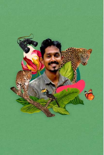 Go On A Leopard Safari In Sri Lanka (1)