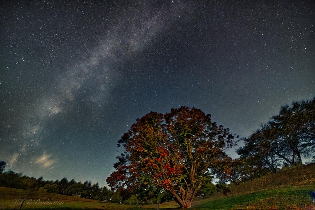 天の川と月光楓1