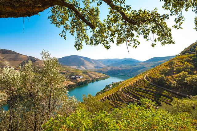 Vale do Douro (Valle del Duero), uno de los imprescindibles que ver en el norte de Portugal