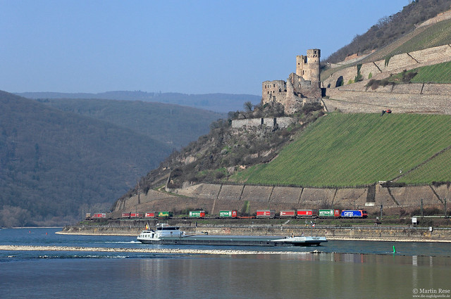 SBB-Cargo im Rheintal [Bild 35948]