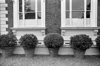 Carlyle Square, Chelsea, Kensington & Chelsea, 1988 88-5i-22-positive_2400
