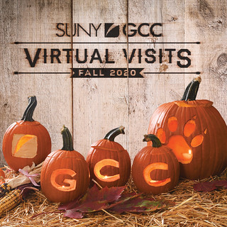 Thu, 09/17/2020 - 18:01 - GCC Fall Virtual Visits image