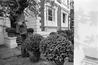 Carlyle Square, Chelsea, Kensington & Chelsea, 1988 88-5i-24-positive_2400