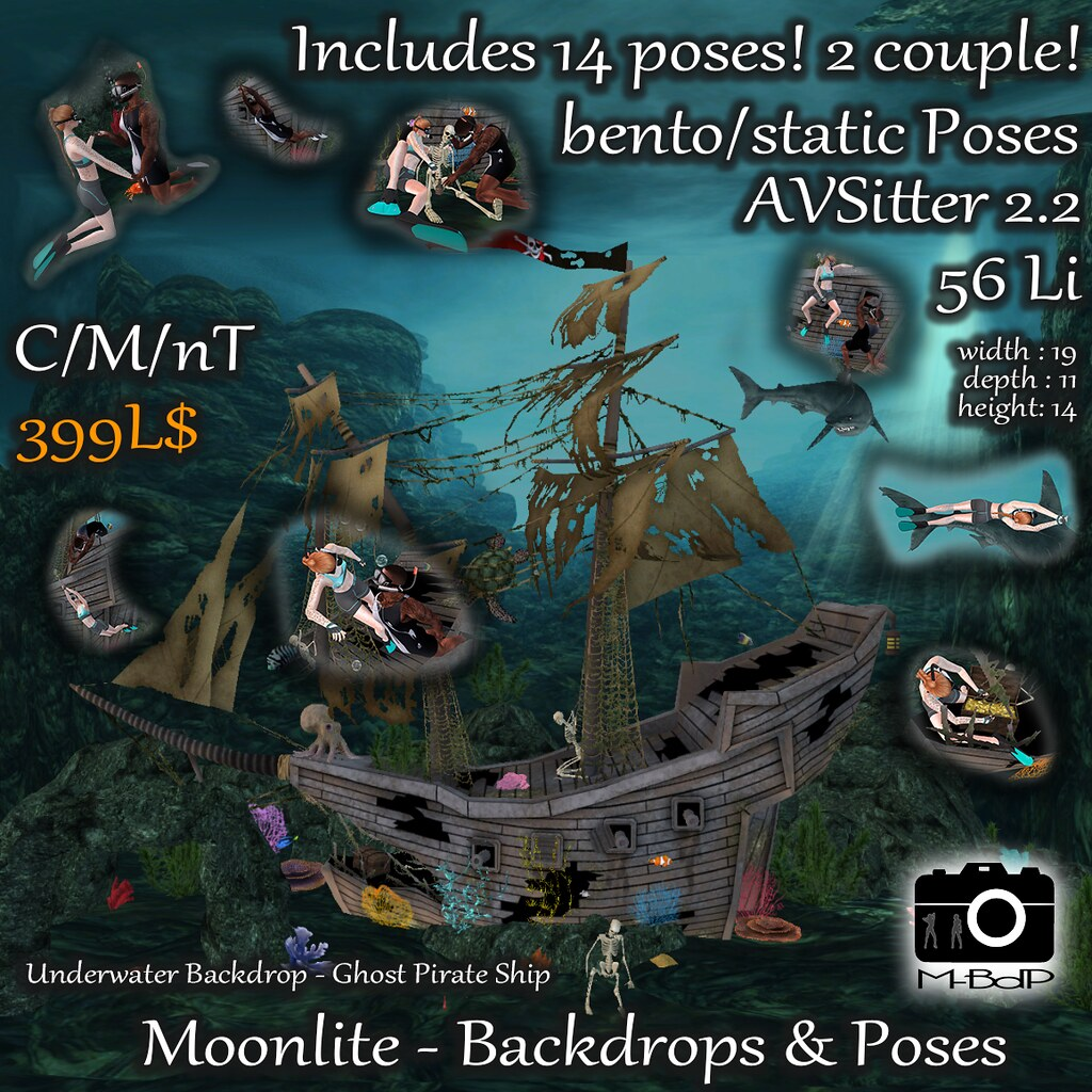 Underwater Pirate Ship – La Vie En Pose