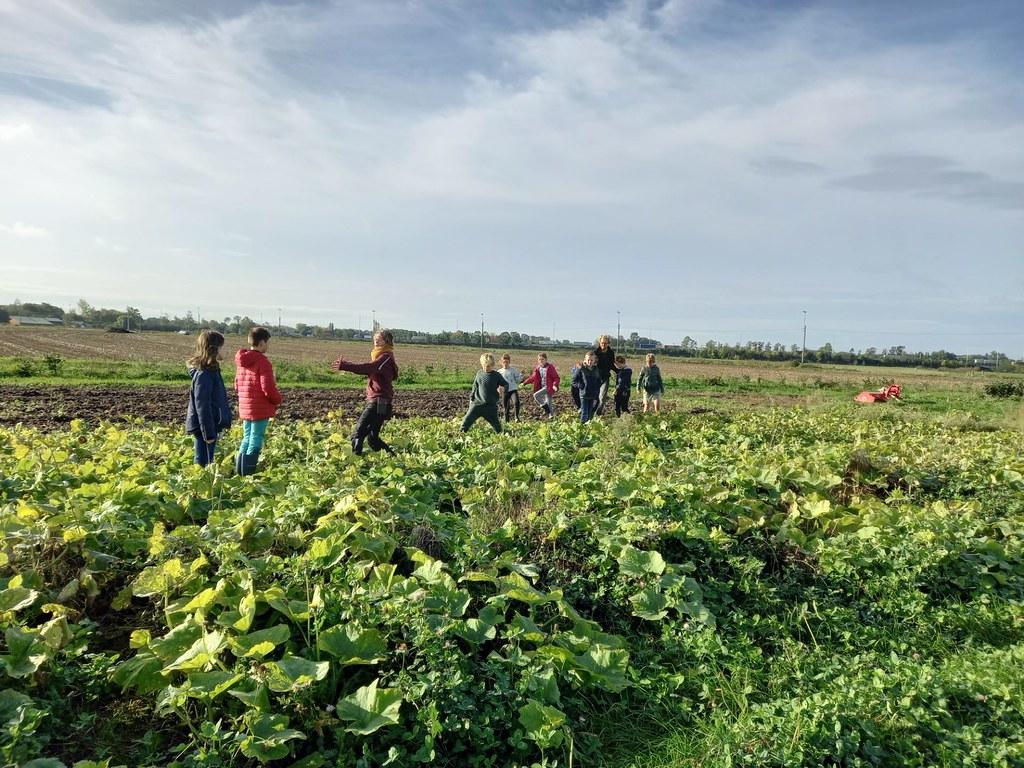 L4 bioboerderij 2020-10-07 (12)