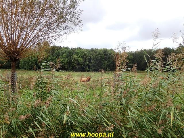 2020-10-07          Rijswijk Rs80      25 Km   (51)