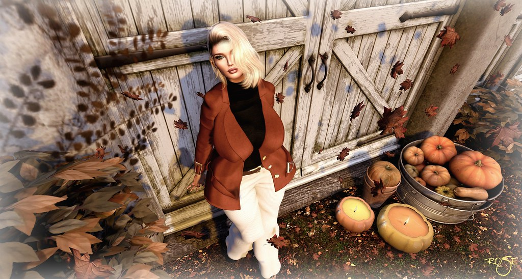 Fall Autumn sadness