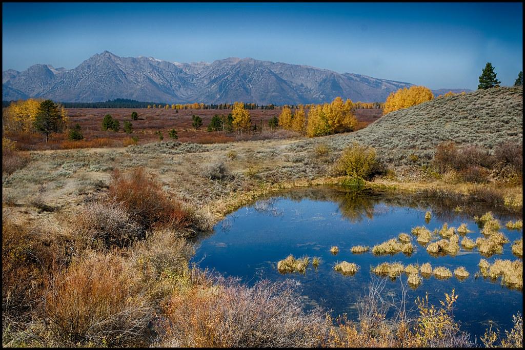 10-6-20 - Tetons - Moose Country - 2