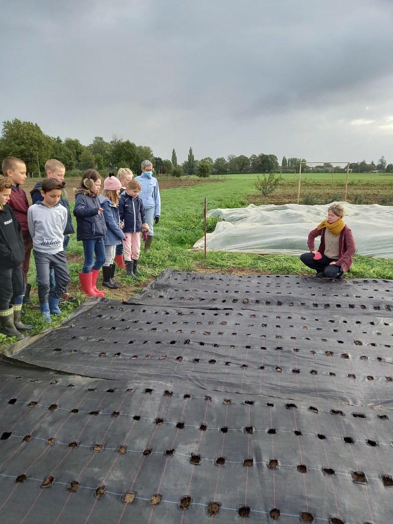 L4 bioboerderij 2020-10-07 (17)
