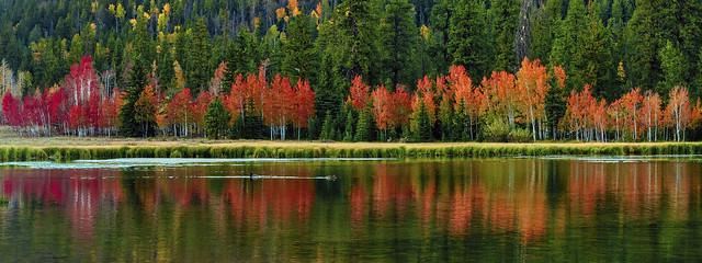 Autumn Colors - 92920--850_2664_8541