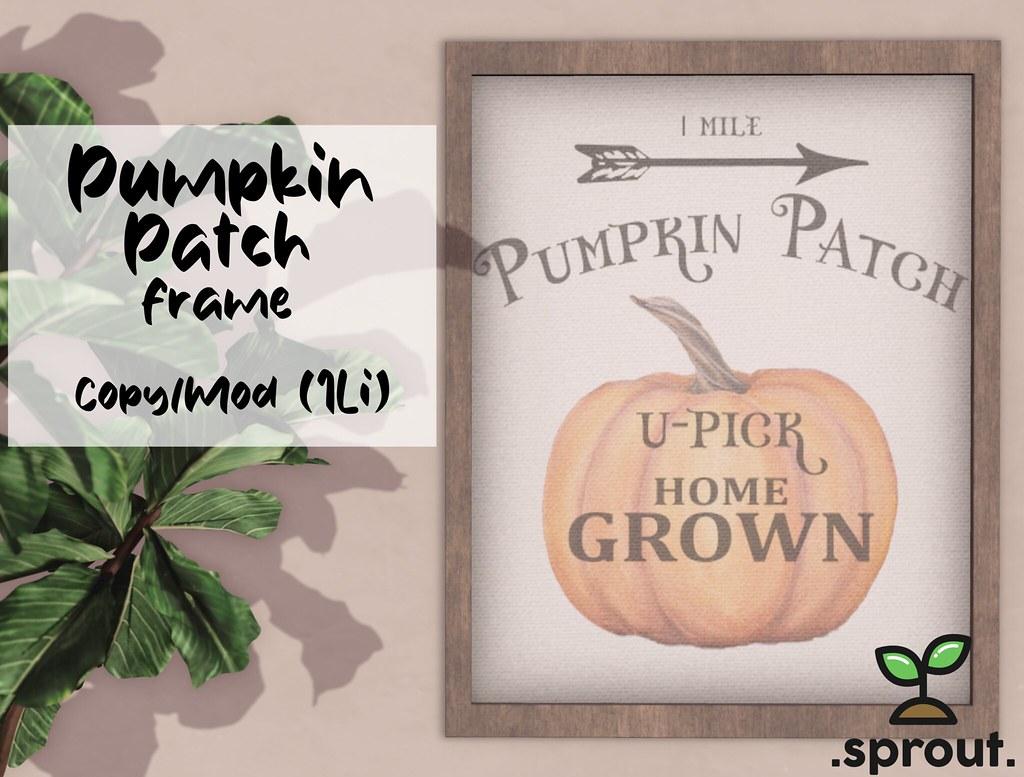.sprout. pumpkin patch frame