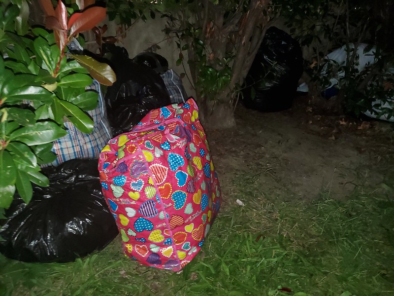 Photo of canvas bags on a lawn, leaning against a fence, taken at night.