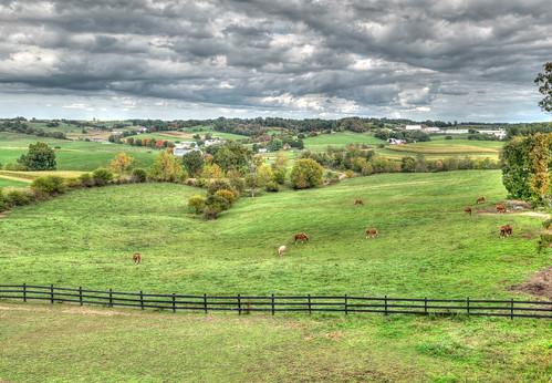 amish flickrfriday hdr holmescounty hugatree ohio farm horses
