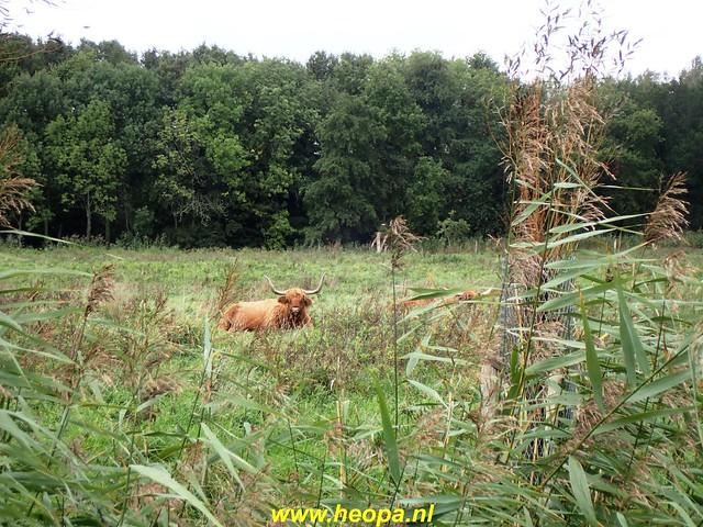 2020-10-07          Rijswijk Rs80      25 Km   (50)