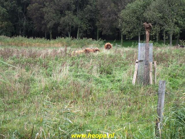 2020-10-07          Rijswijk Rs80      25 Km   (49)