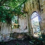 Jungle & Windows in Duppy Church, Mile Gully Jamaica