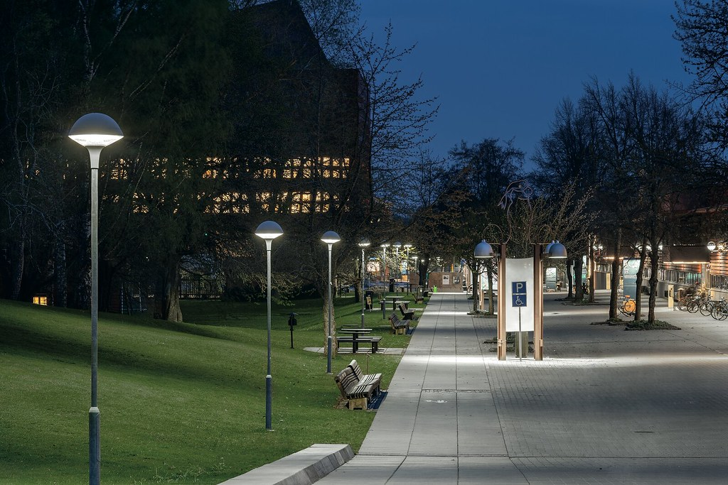 Linkoping University, Plurio
