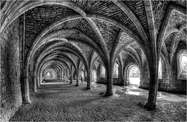 Fountains Abbey - Cellarium.