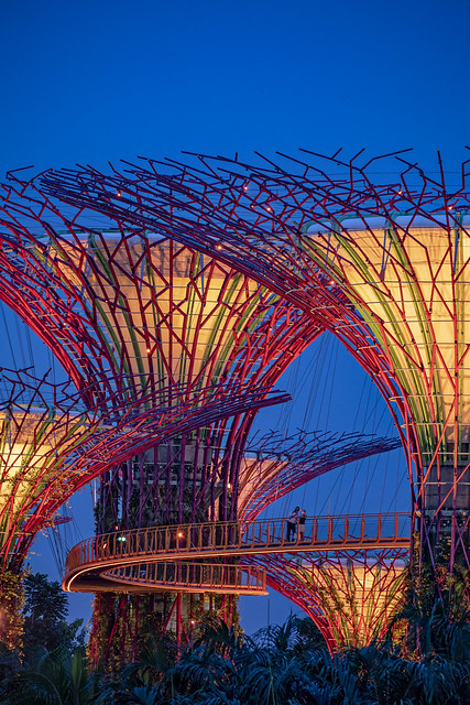 SuperTrees @ Gardens by the Bay, Singapore