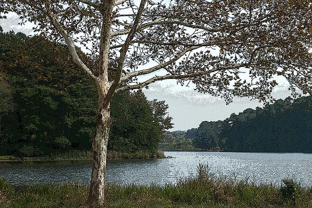 Lake Acworth
