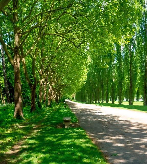 Zen Athmosphere Parc de Sceaux