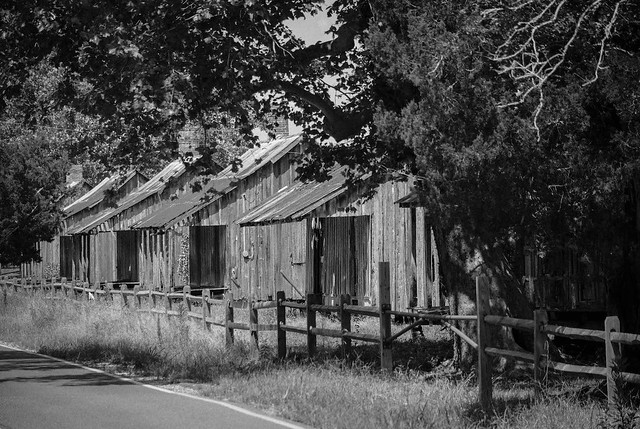 Cabins B/W