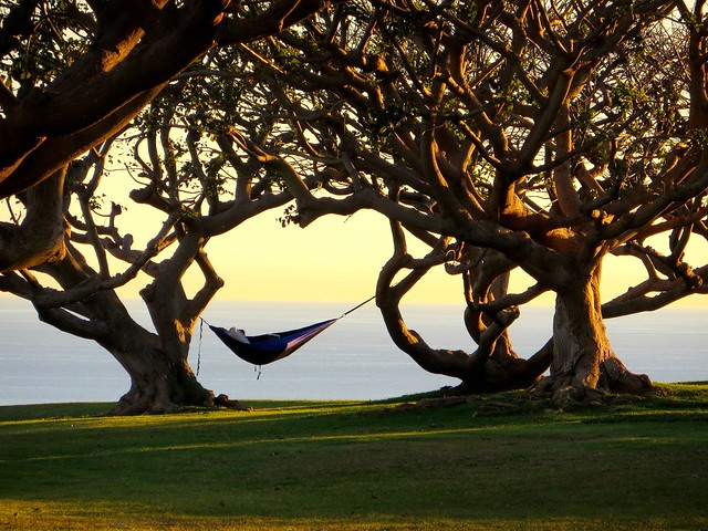 tbt: napping at Pepperdine