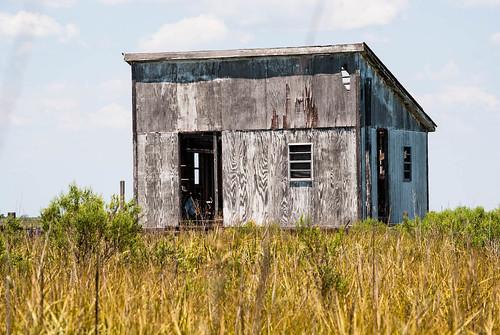Abandoned Swamp Cabin