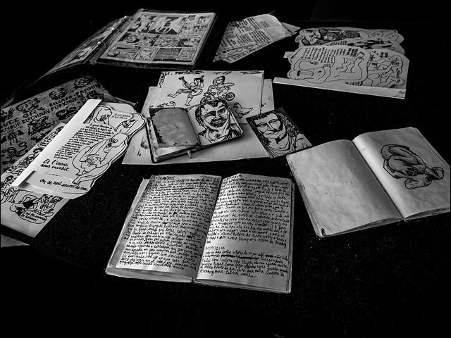 Les notes de l'artiste / Artist's notes
