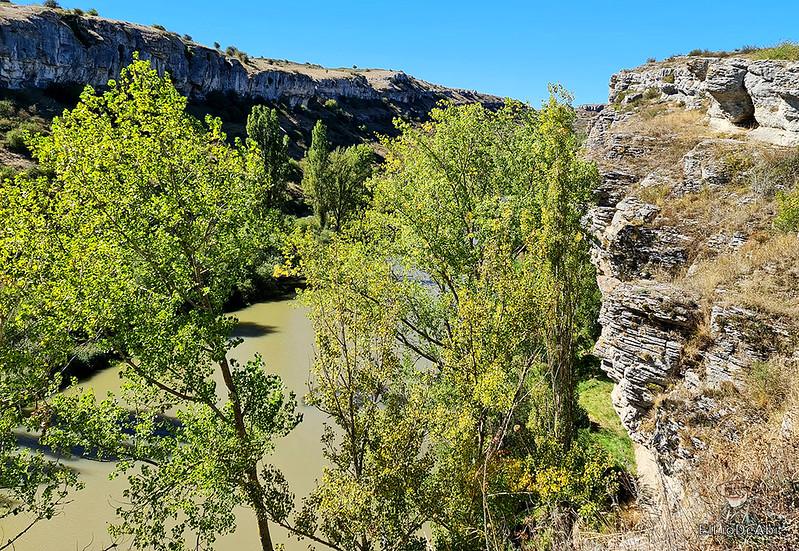 Descubre el Cañón de la Horadada cerca de Aguilar de Campoo (9)