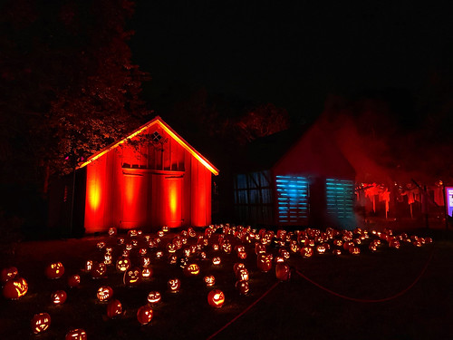 The Great Jack O'Lantern Blaze (5)