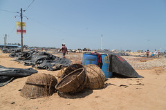 Sri Lanka 2015 Negombo fish market beach-2260