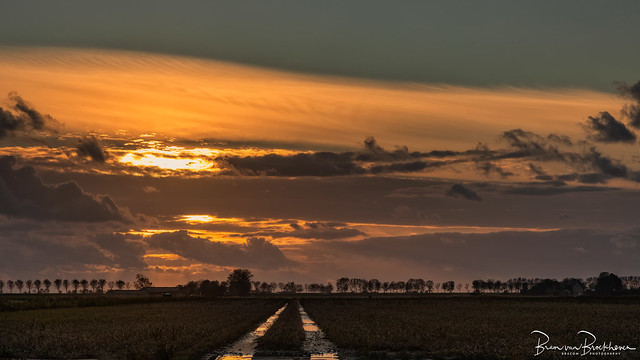 Sunset reflections in tracks