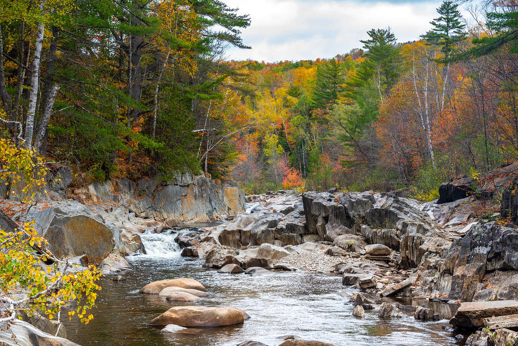Fall Colors around River
