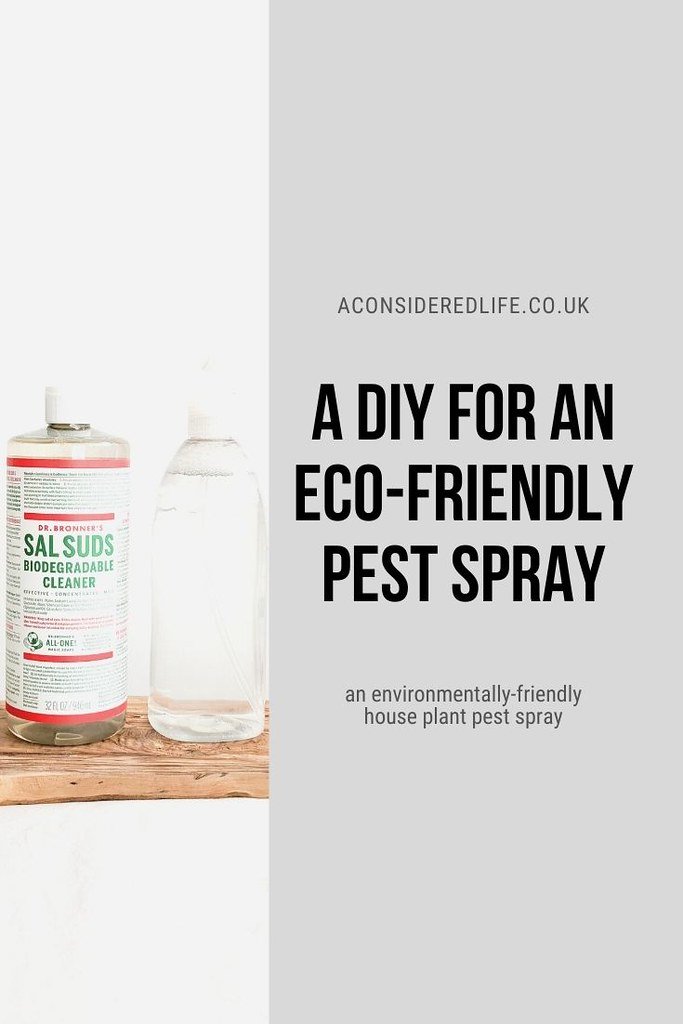 DIY Pest Spray For House Plants