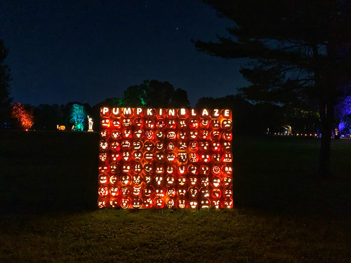 The Great Jack O'Lantern Blaze (2)